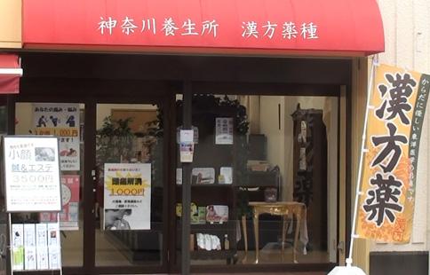神奈川養生所 漢方薬種